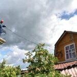 Россети — обрезать кроны деревьев